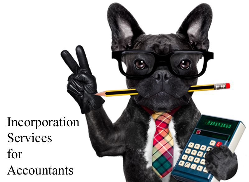 Accountants, Have You Been tempted to Incorporate Your Clients the Fast and Inexpensive Way?