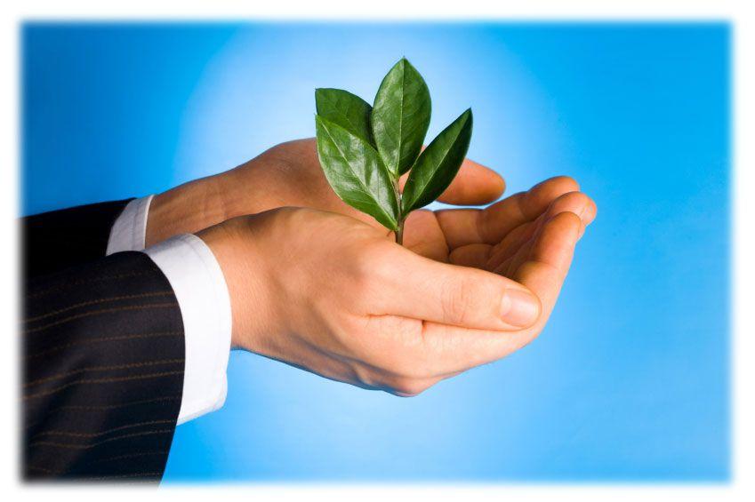 B_Corporations_Business_Lawyer_Orange_County